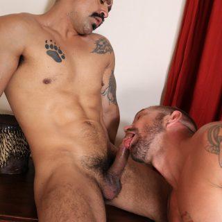 Amir Dib & Stephan Raw