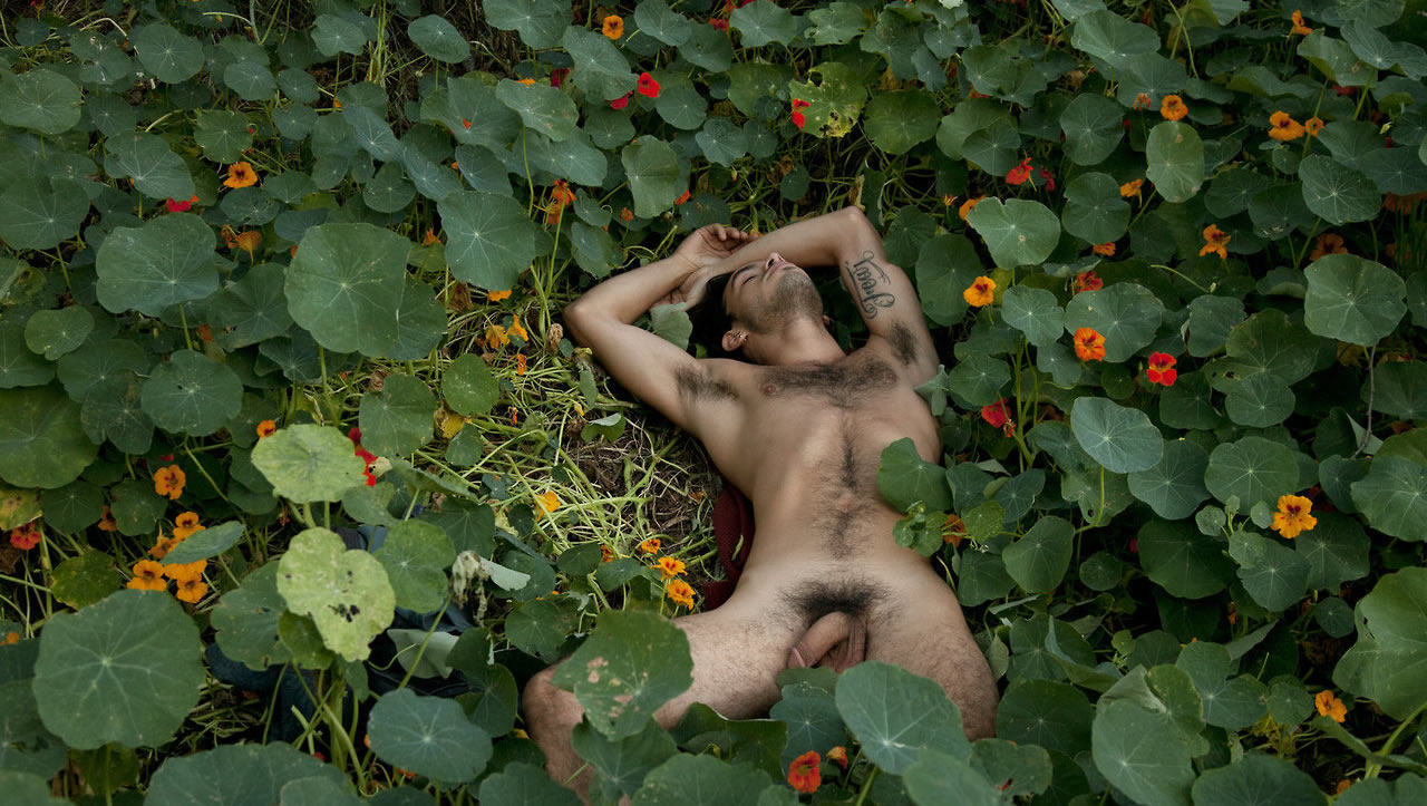 Full-Frontal Fit Guy in a Field of Flowers