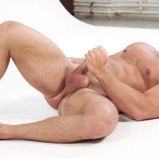 Peter Stallion