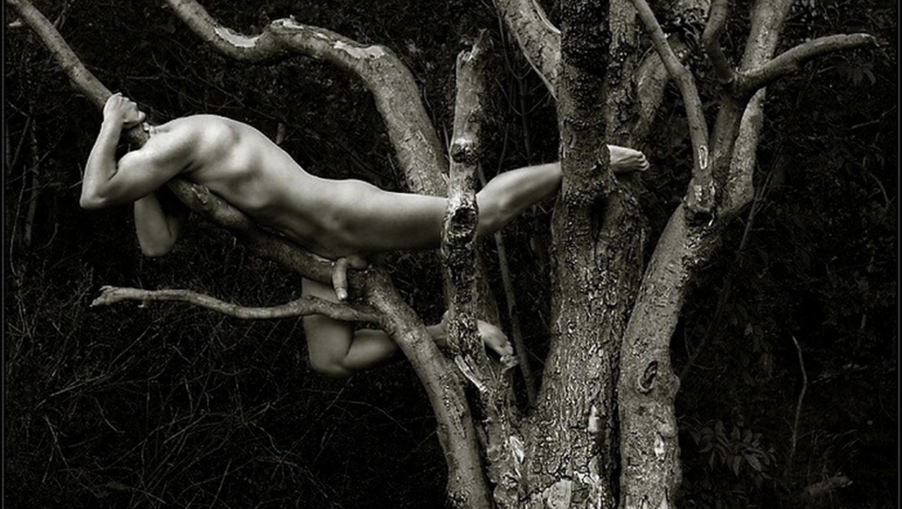 Black and White Full-Frontal Naked Stud in a Tree